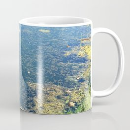Edge of Pond in Dappled Morning Light Coffee Mug