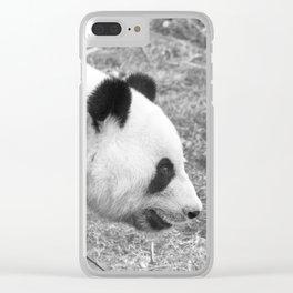 Posing panda Clear iPhone Case