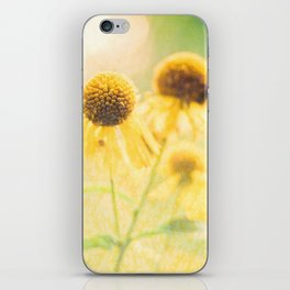 Sunshiny iPhone Skin