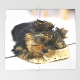 Puppy And the First Chewing Bone Yorkshireterrier #decor #society6 Throw Blanket
