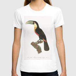 Red-billed Toucan from Histoire Naturelle des Oiseaux de Paradis et Des Rolliers (1806)by Jacques Ba T-shirt