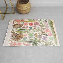 Adolphe Millot - Algues - French vintage poster Rug