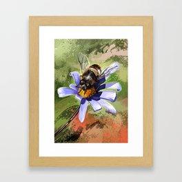 Bee on flower 18 Framed Art Print