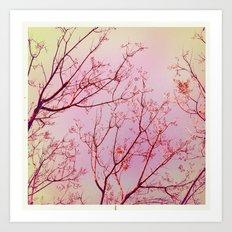 Pink Skies II Art Print