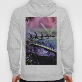 Mushrooms from other planet Hoody