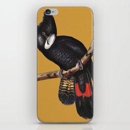 Black Cockatoo Vintage Painting iPhone Skin