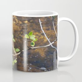 McNallie Creek Coffee Mug