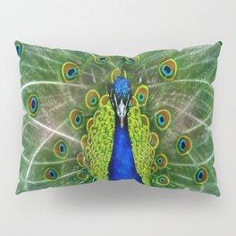 Peacock dreamcatcher Pillow Sham