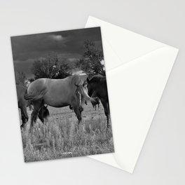 Three Ponies Stationery Cards