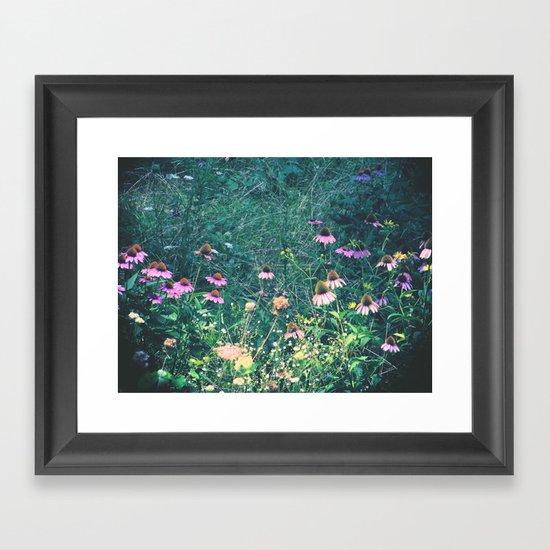 Flowers of the Field Framed Art Print