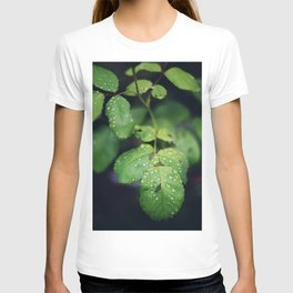 Raindrops on Green Leaves T-shirt