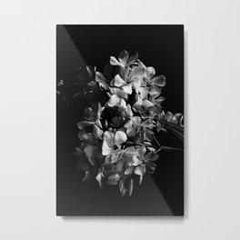 Oleander flowers in black and white 2 Metal Print