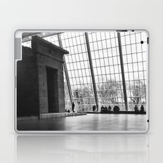 Temple of Dendur Laptop & iPad Skin