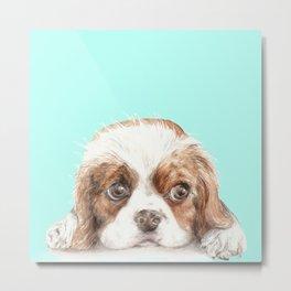 Cavalier King Charles Spaniel Dog Watercolor Pet Portrait Metal Print