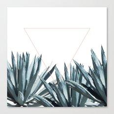 Agave Triangle Canvas Print