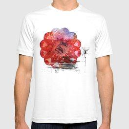 Santa Teresa Experience T-shirt