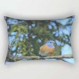 Western Bluebird Beauty by Reay of Light Photography Rectangular Pillow
