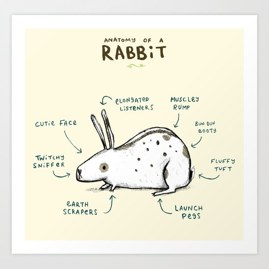 Anatomy of a Rabbit Art Print