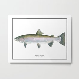 Summer Steelhead - Polygon Fish Series Metal Print