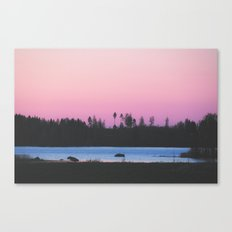 Pink skies over the lake Canvas Print