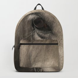 Horse look Backpack