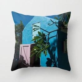 Aesthetically Pleasing Building Throw Pillow