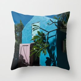 Aesthetically Pleasing Building Throw Pillow