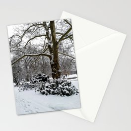 Winter Shade Stationery Cards