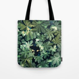 Where´s the kitty? Tote Bag