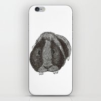 guinea pig iPhone & iPod Skins featuring Guinea Pig. by Elena O'Neill