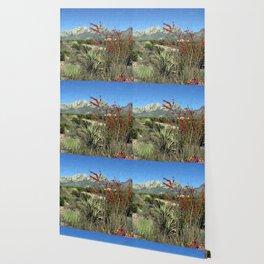 Desert Bloom Wallpaper