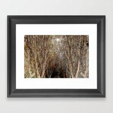 Wonderwood Framed Art Print