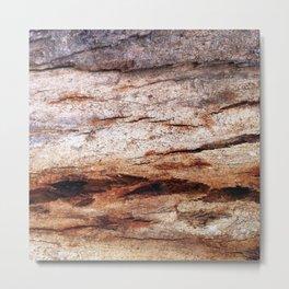 Shiver Me Timbers - 2 Metal Print