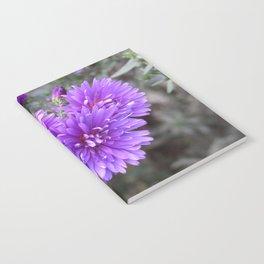 F.l.o.w.e.r Notebook
