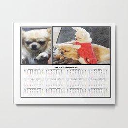 Gremlin Chihuahua and Funny Chihuahuas Calendar 2017 Metal Print
