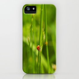 Ladybug in the Jungle iPhone Case
