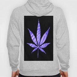 Weed : High Times Purple Blue Hoody
