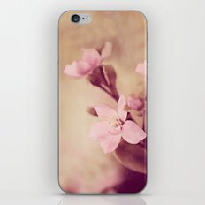 Pink Sentiments iPhone & iPod Skin