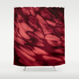 Esoteric Shower Curtain