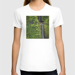 Just Beyond the No Trespassing Sign - Crooked Tropical Waterfall T-shirt