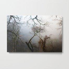 Misty Morning in Scotland Metal Print