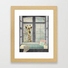 Bay Window Giraffe Framed Art Print