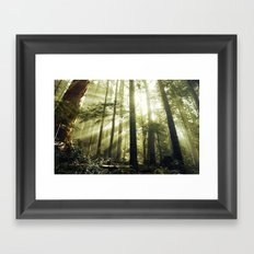 The Call of the Forest Framed Art Print