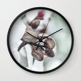 Caught in a dream.. 1 Wall Clock