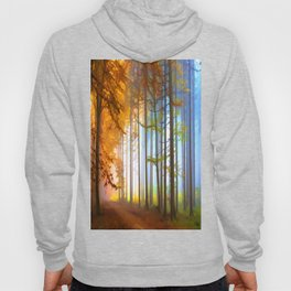 Ethereal Forest  Hoody
