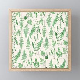 Ferns on Cream I - Botanical Print Framed Mini Art Print