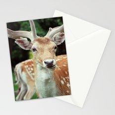 Deer Me Stationery Cards