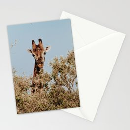 Giraffe II Stationery Cards