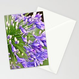 Agapanthus (African Lily) Stationery Cards