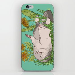 Sleeping Ferret with Dandelions and Grass iPhone Skin